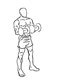 Biceps-curl-reverse-2