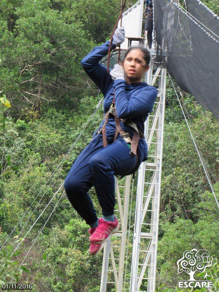 Flying Fox / Flying Lemur Escape Penang
