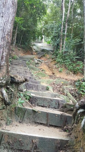 1500 Steps to Station 46