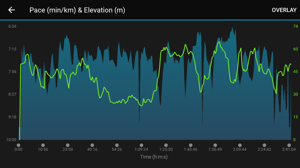 Elevation Nightmare PJ Half Marathon